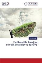 Olcay Y lmaz, Olcay Yilmaz - Yenilenebilir Enerjiye Yönelik Tesvikler ve Türkiye