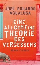 Jose E. Agualusa, José Eduardo Agualusa - Eine allgemeine Theorie des Vergessens