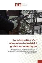 Atef Korchef - Caractérisation d'un aluminium industriel à grains nanométriques