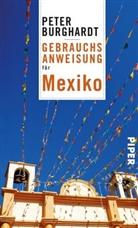 Peter Burghardt - Gebrauchsanweisung für Mexiko