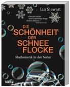 Ian Stewart, Andrea Kamphuis - Die Schönheit der Schneeflocke