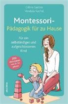 Vendula Kachel, Célin Santini, Céline Santini - Montessori-Pädagogik für zu Hause