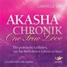 Gabrielle Orr, Gabi Franke - Akasha Chronik - One True Love, 2 Audio-CDs (Hörbuch)