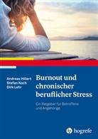 Andrea Hillert, Andreas Hillert, Stefa Koch, Stefan Koch, Dirk Lehr - Burnout und chronischer beruflicher Stress