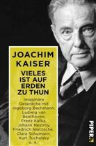 Joachim Kaiser - Vieles ist auf Erden zu thun