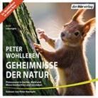 Peter Wohlleben, Peter Kaempfe - Geheimnisse der Natur, 9 Audio-CDs (Hörbuch)