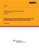 Anonym - Regulierung eines natürlichen Monopols mit Marktmacht. Die Anreizregulierung im deutschen Strommarkt