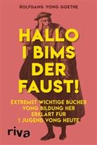 Rolfgang vong Goethe, Rolfgang vong Goethe - Hallo i bims der Faust
