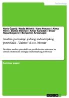 """Benjamin Arslanagic, Zlatko Bosnjic, Haris Capelj, Ensar Hasanbegovic, Alma Horo, Na a Miletic... - Analiza potrosnje jednog industrijskog potrosaca . """"Zalmo"""" d.o.o. Mostar"""