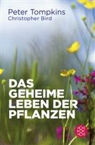 Christopher Bird, Pete Tompkins, Peter Tompkins - Das geheime Leben der Pflanzen