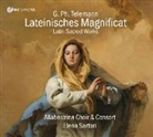 Georg Philipp Telemann - Lateinisches Magnificat, 1 Audio-CD (Hörbuch)