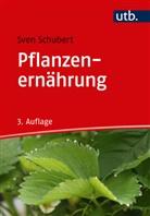 Sven Schubert, Sven (Prof. Dr.) Schubert - Pflanzenernährung