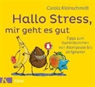 Carola Kleinschmidt, Kai Pannen - Hallo Stress, mir geht es gut