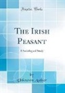 Unknown Author - The Irish Peasant