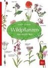 Claus Caspari, Gertru Scherf, Gertrud Scherf - Wildpflanzen neu entdecken