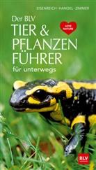 Wilhel Eisenreich, Wilhelm Eisenreich, Alfred Handel, Ute Zimmer, Ute E. Zimmer - Der BLV Tier & Pflanzenführer für unterwegs
