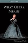 Kate Hopkins, Christopher Wintle - What Opera Means