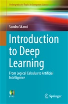Sandro Skansi - Introduction to Deep Learning