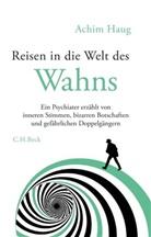 Achim Haug - Reisen in die Welt des Wahns
