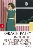 Grace Paley - Ungeheure Veränderungen in letzter Minute