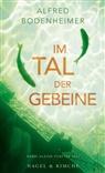 Alfred Bodenheimer - Im Tal der Gebeine