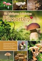 garant Verlag GmbH, garan Verlag GmbH - Die häufigsten heimischen Pilzsorten