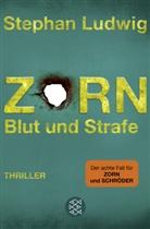 Stephan Ludwig - Zorn - Blut und Strafe
