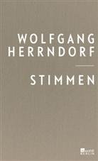 Wolfgang Herrndorf - Stimmen