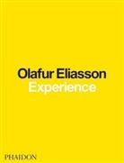 Olafu Eliasson, Olafur Eliasson, Ólafur Eliasson, Ann Engberg-Pedersen, Anna Engberg-Pedersen, Michelle Kuo... - Experience