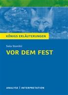 Sasa Stanisic, Saša Stanišić - Sasa Stanisic 'Vor dem Fest'