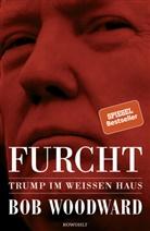 Bob Woodward - Furcht
