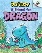 Dav Pilkey, Dav Pilkey - A Friend for Dragon