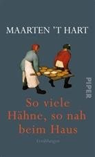 Maarten 't Hart - So viele Hähne, so nah beim Haus