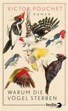 Victor Pouchet - Warum die Vögel sterben