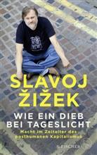 Slavoj Zizek, Slavoj Žižek - Wie ein Dieb bei Tageslicht