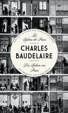 Charles Baudelaire, Simo Werle, Simon Werle - Le Spleen de Paris - Der Spleen von Paris
