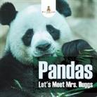 Baby - Pandas - Let's Meet Mrs. Huggs