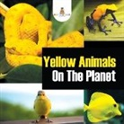 Baby - Yellow Animals on the Planet
