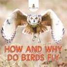 Baby - How and Why Do Birds Fly
