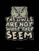 Engy Publishing - The Owls Are Not What They Seem: Unruled Composition Book