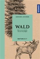 Adriane Lochner - Naturzeit Wald