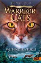 Erin Hunter, Friederike Levin - Warrior Cats - Vision von Schatten. Wütender Sturm