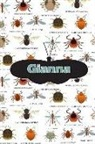 Rob Cole - Gianna: Bug Insect Isometric Dot Pape Book Notebook Journal Book 120 Pages 6x9