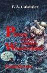 F. A. Cuisinier, Cuisinier F A, Cuisinier F. A. - Picon und das entführte Wunderkind