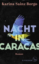 Karina Sainz Borgo - Nacht in Caracas