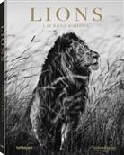 Laurent Baheux - Lions