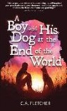 C. A. Fletcher - A Boy and His Dog at the End of the World