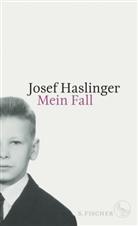 Josef Haslinger, Prof. Dr. Josef Haslinger - Mein Fall