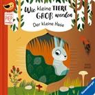 Agnese Baruzzi, Gabriele Clima, Sandra Grimm, Agnese Baruzzi - Wie kleine Tiere groß werden: Der kleine Hase