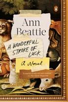 Ann Beattie - A Wonderful Stroke of Luck